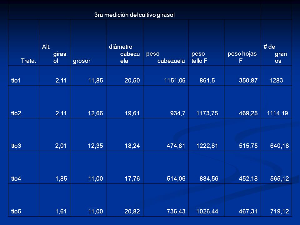 3ra medición del cultivo girasol