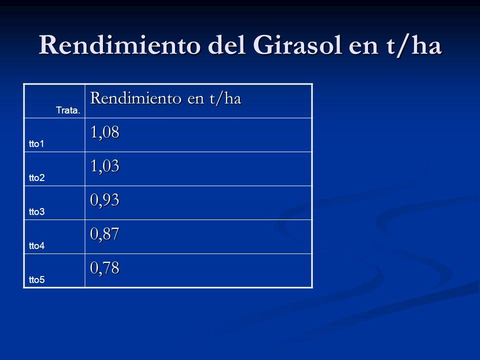Rendimiento del Girasol en t/ha