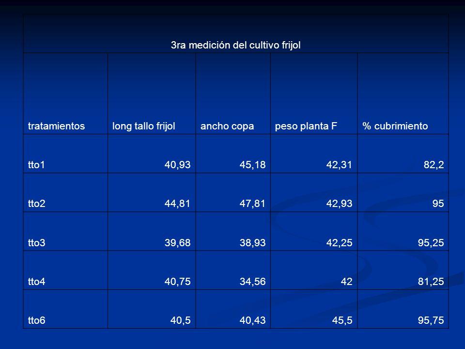 3ra medición del cultivo frijol