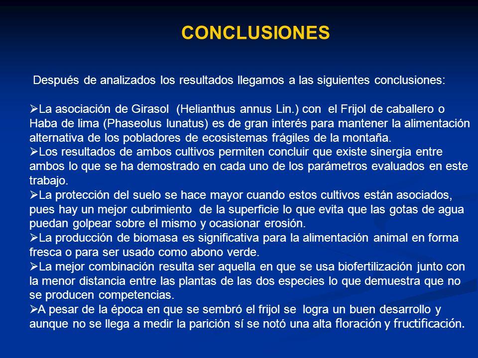 CONCLUSIONES Después de analizados los resultados llegamos a las siguientes conclusiones: