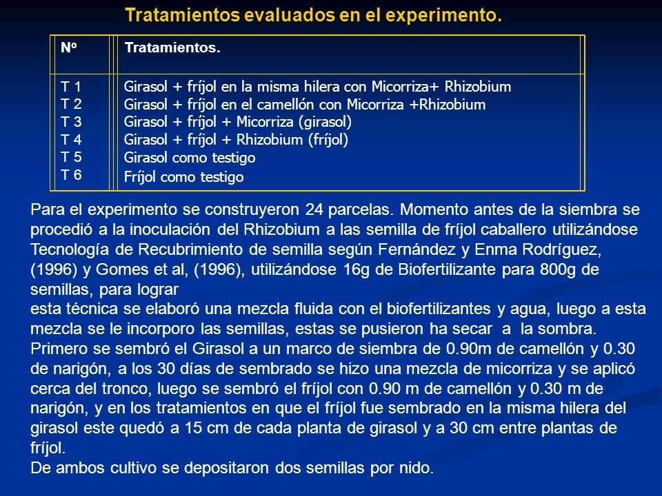 Tratamientos evaluados en el experimento.