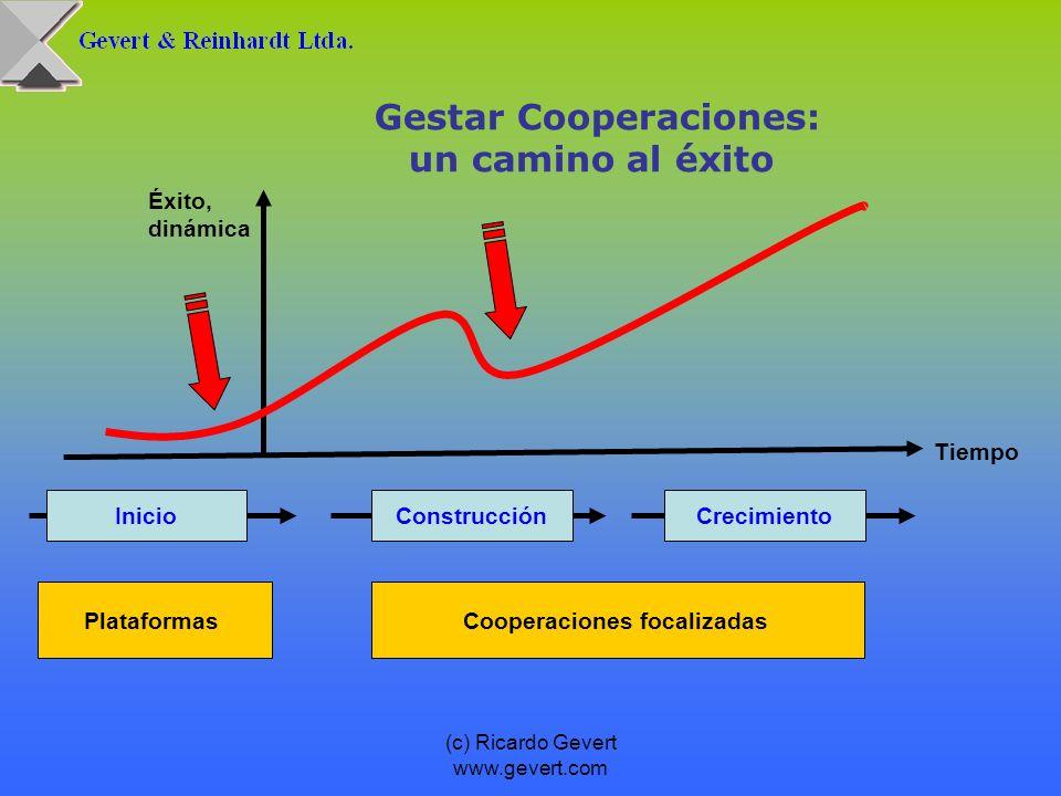 Gestar Cooperaciones: Cooperaciones focalizadas