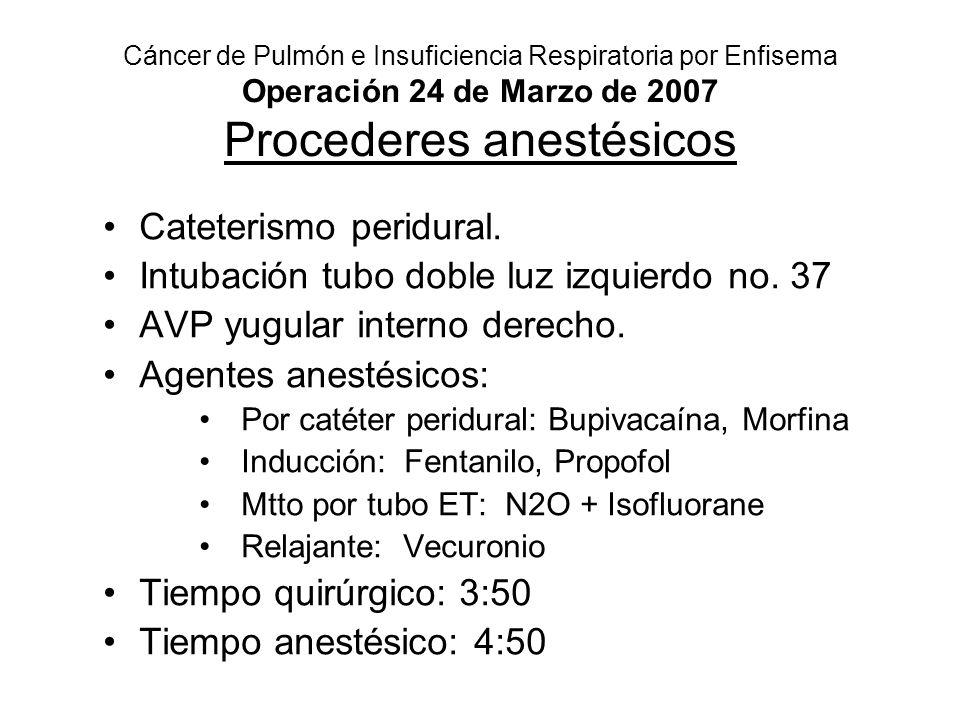 Cateterismo peridural. Intubación tubo doble luz izquierdo no. 37