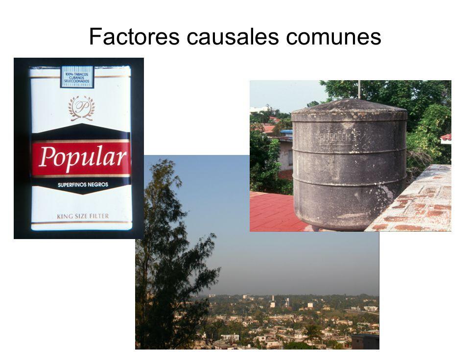 Factores causales comunes