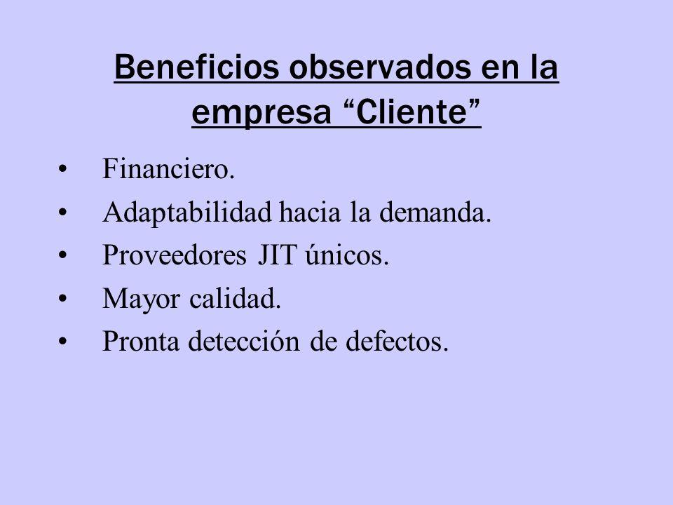 Beneficios observados en la empresa Cliente
