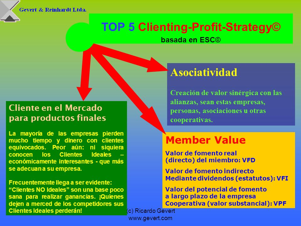 TOP 5 Clienting-Profit-Strategy© basada en ESC©