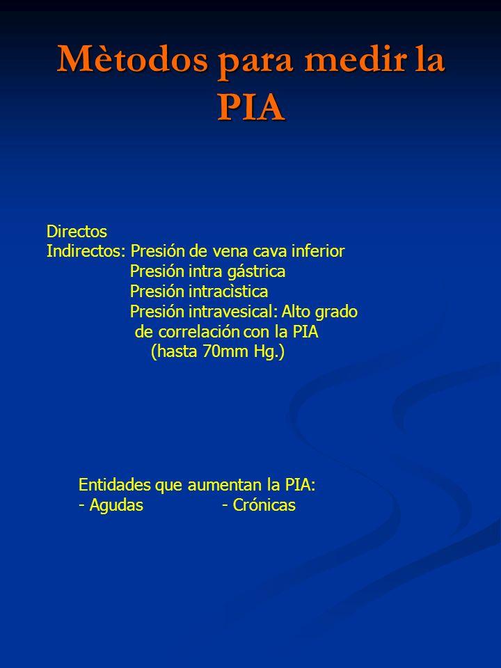 Mètodos para medir la PIA