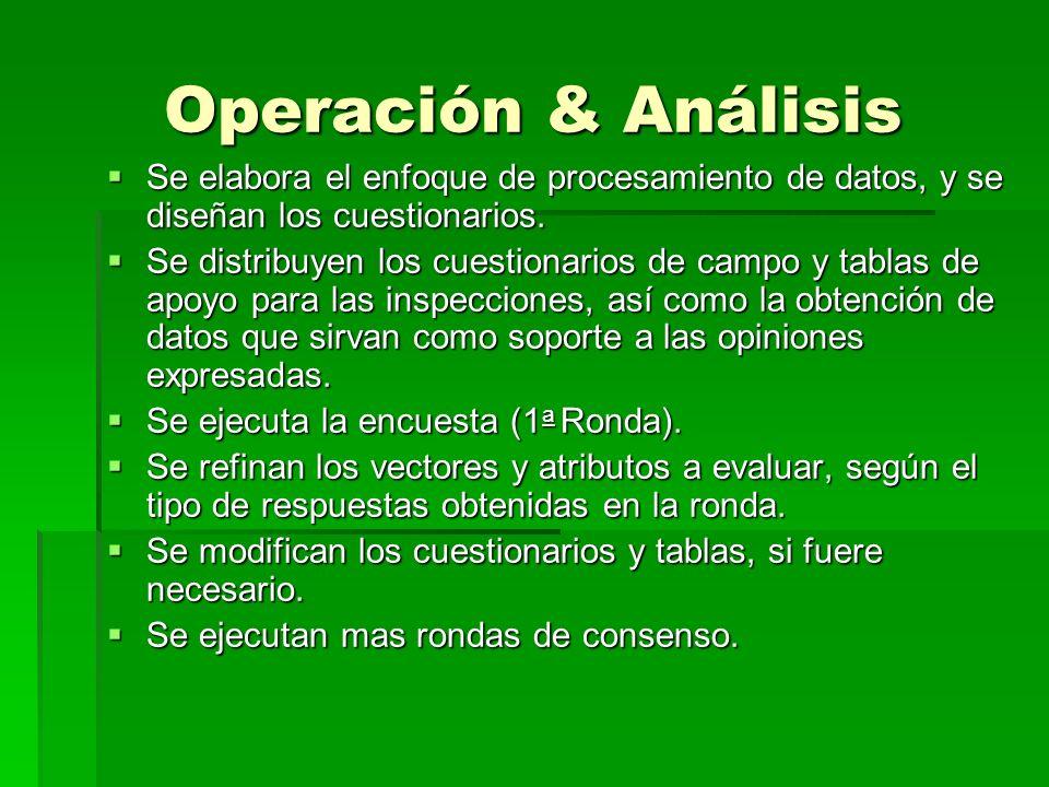 Operación & Análisis Se elabora el enfoque de procesamiento de datos, y se diseñan los cuestionarios.