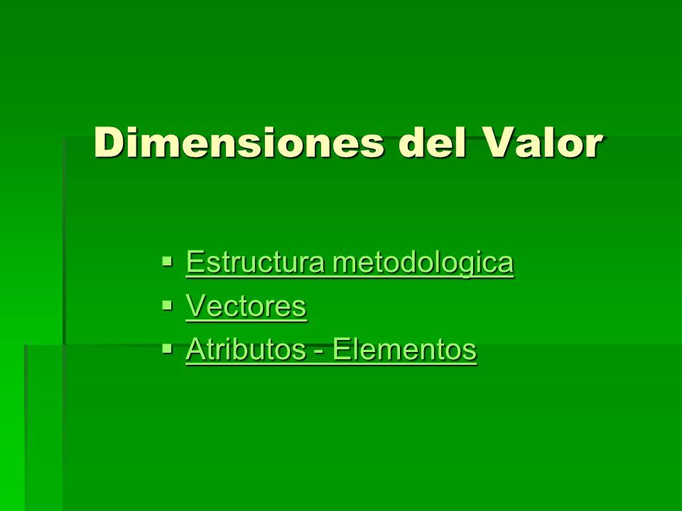 Dimensiones del Valor Estructura metodologica Vectores