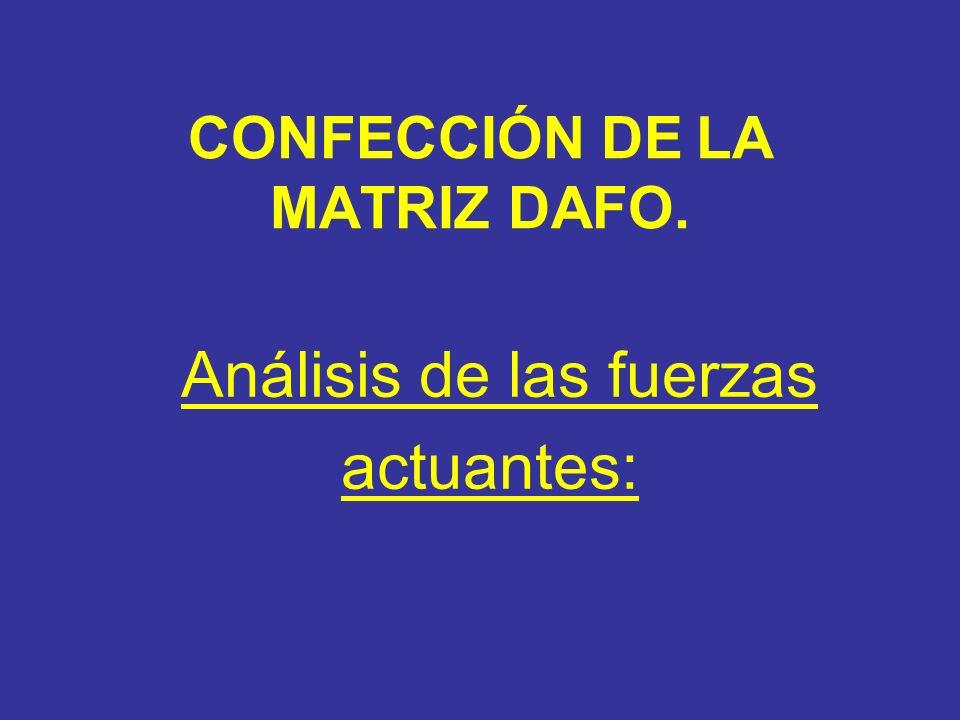 CONFECCIÓN DE LA MATRIZ DAFO.