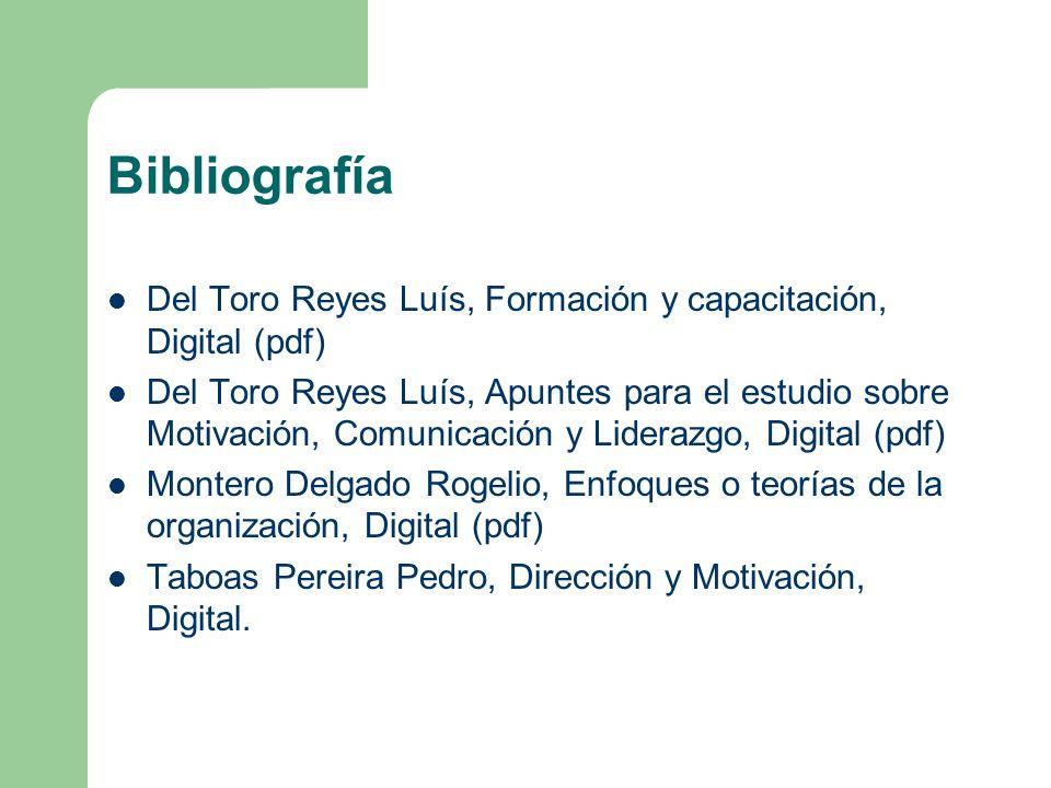 Bibliografía Del Toro Reyes Luís, Formación y capacitación, Digital (pdf)
