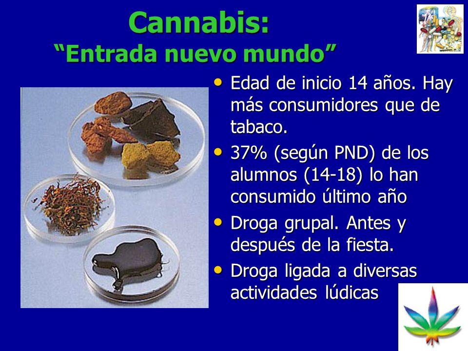 Cannabis: Entrada nuevo mundo