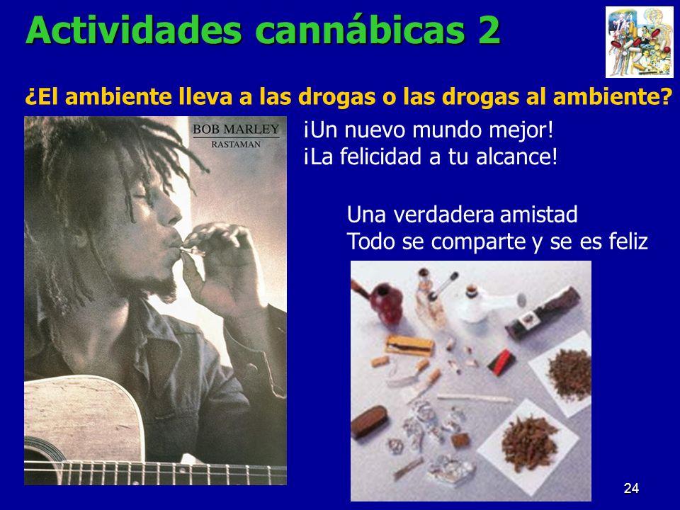 Actividades cannábicas 2