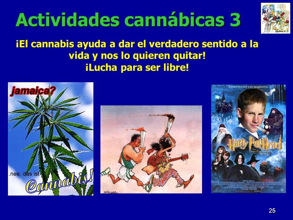 Actividades cannábicas 3