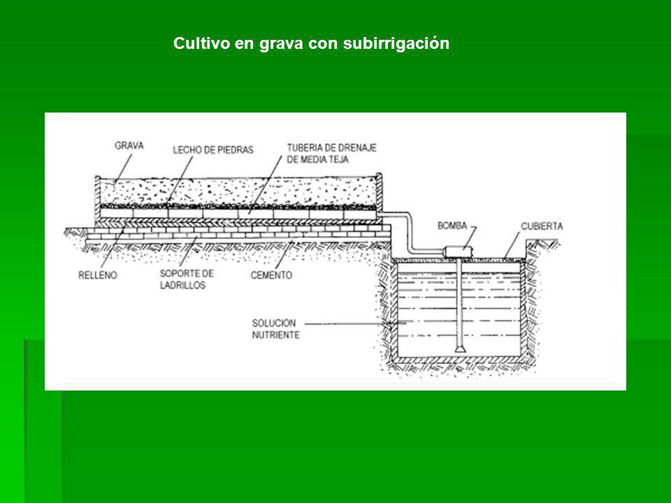 Cultivo en grava con subirrigación