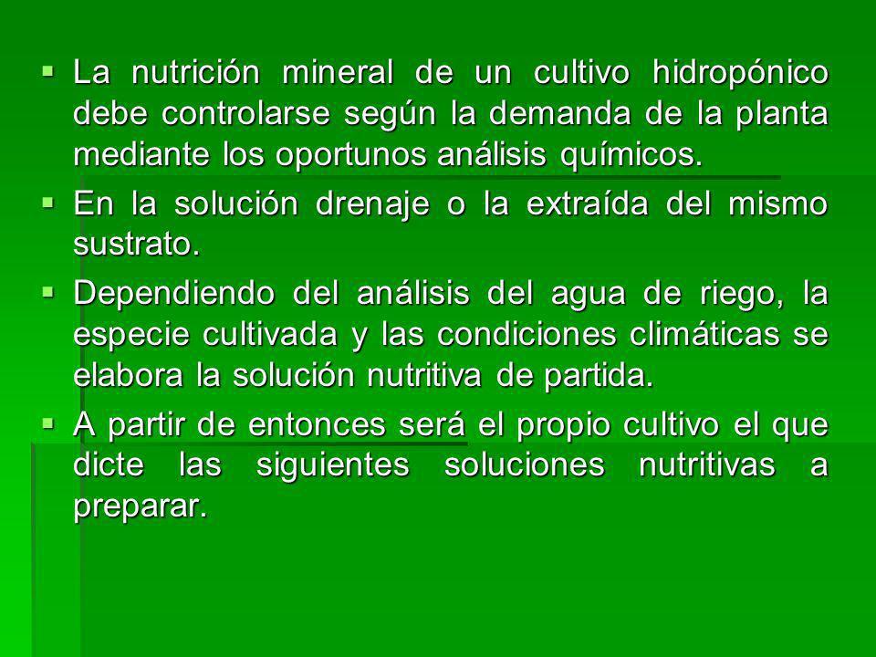 La nutrición mineral de un cultivo hidropónico debe controlarse según la demanda de la planta mediante los oportunos análisis químicos.