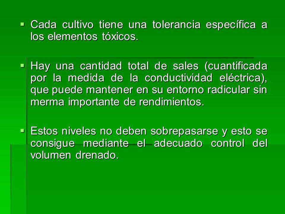 Cada cultivo tiene una tolerancia específica a los elementos tóxicos.
