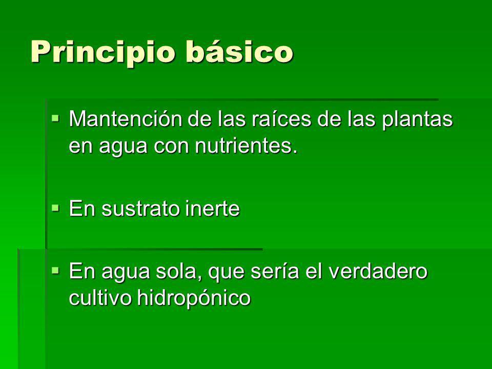 Principio básico Mantención de las raíces de las plantas en agua con nutrientes. En sustrato inerte.