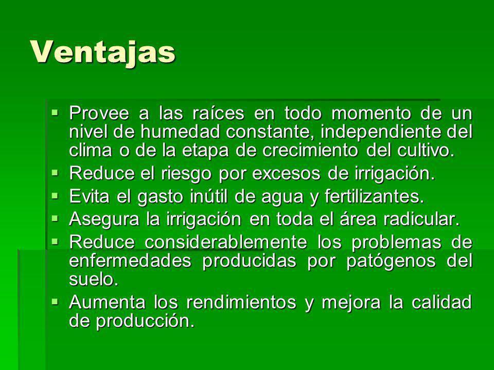 VentajasProvee a las raíces en todo momento de un nivel de humedad constante, independiente del clima o de la etapa de crecimiento del cultivo.