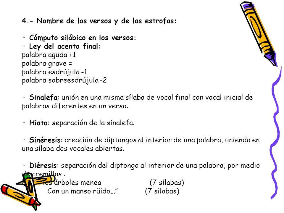 4.- Nombre de los versos y de las estrofas: