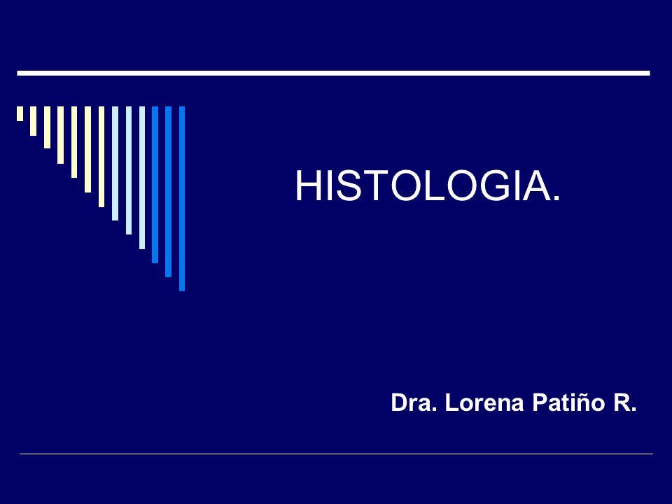 HISTOLOGIA. Dra. Lorena Patiño R.