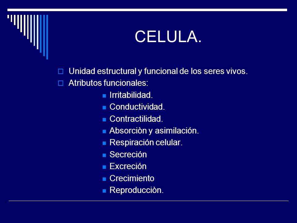CELULA. Unidad estructural y funcional de los seres vivos.