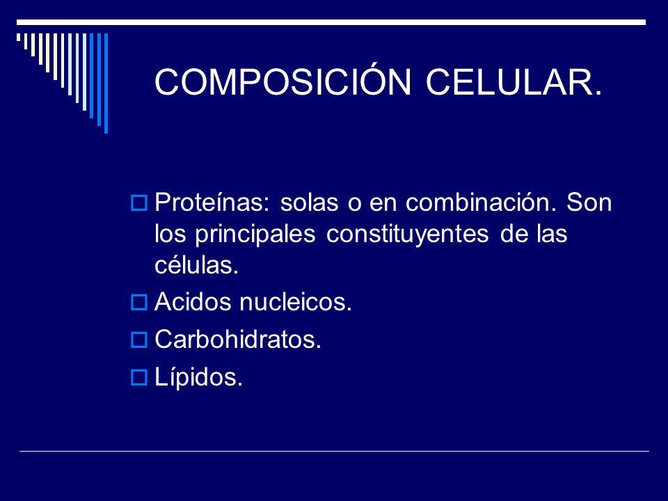 COMPOSICIÓN CELULAR. Proteínas: solas o en combinación. Son los principales constituyentes de las células.