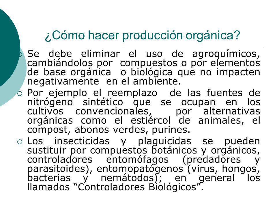 ¿Cómo hacer producción orgánica