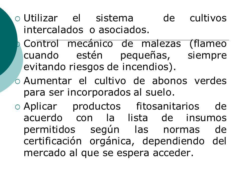 Utilizar el sistema de cultivos intercalados o asociados.