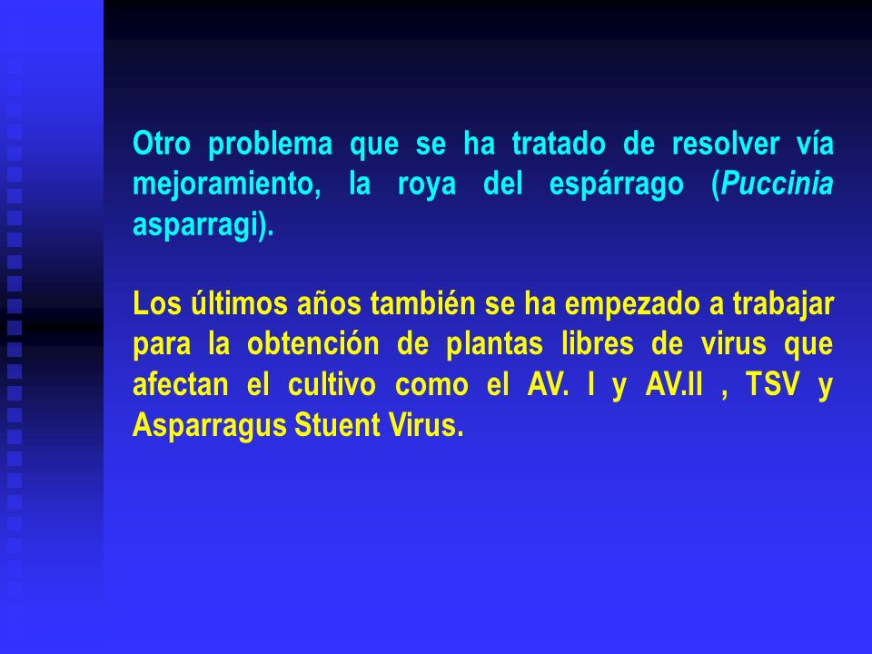 Otro problema que se ha tratado de resolver vía mejoramiento, la roya del espárrago (Puccinia asparragi).