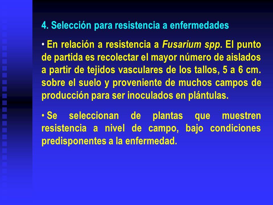 4. Selección para resistencia a enfermedades