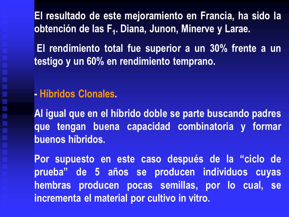 El resultado de este mejoramiento en Francia, ha sido la obtención de las F1. Diana, Junon, Minerve y Larae.