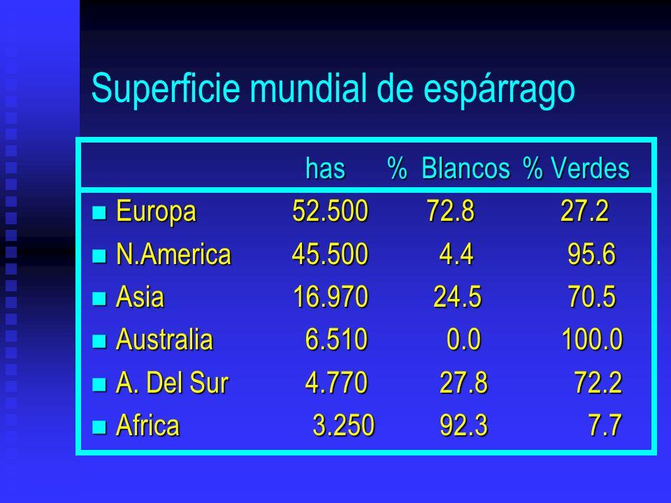 Superficie mundial de espárrago