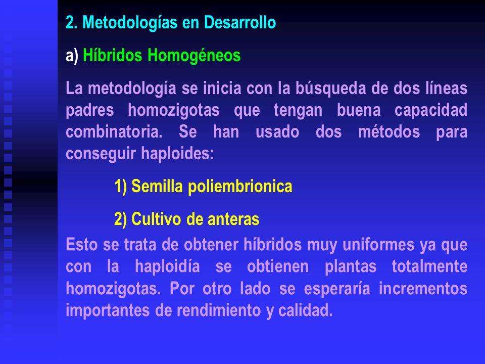 2. Metodologías en Desarrollo