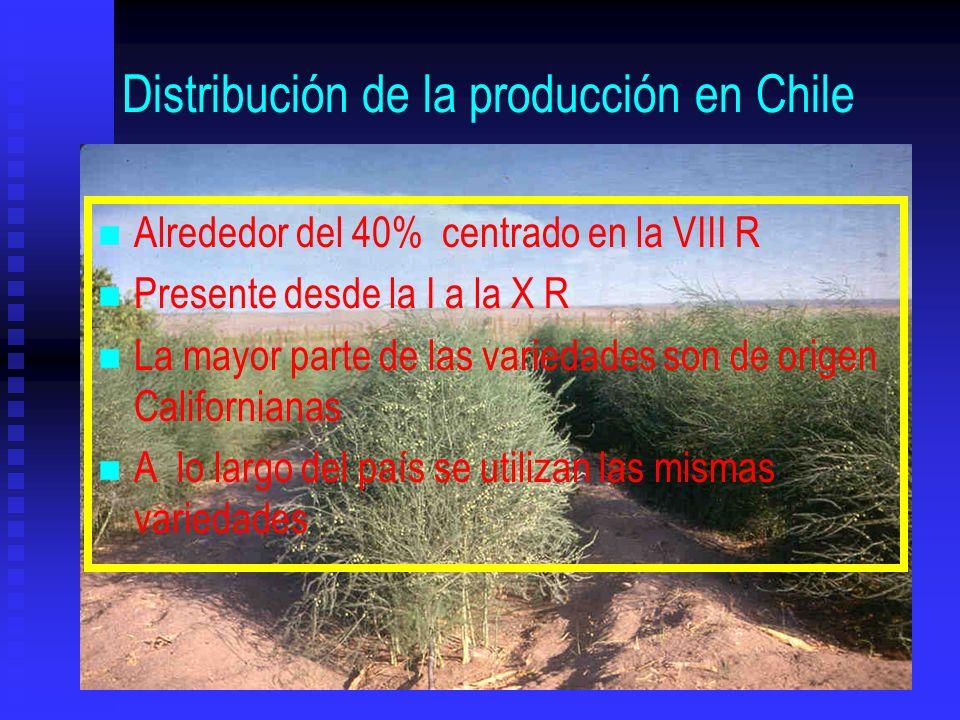 Distribución de la producción en Chile