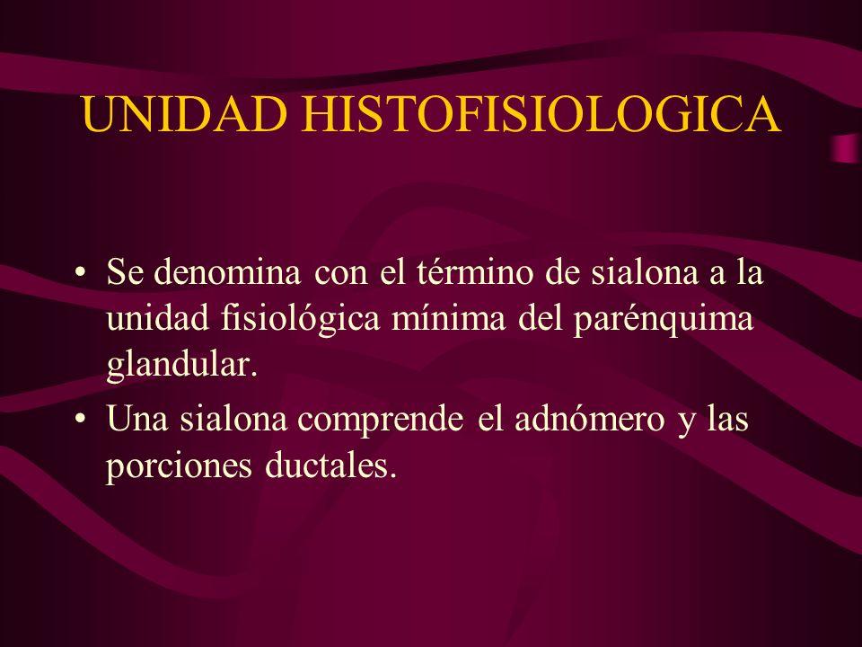 UNIDAD HISTOFISIOLOGICA