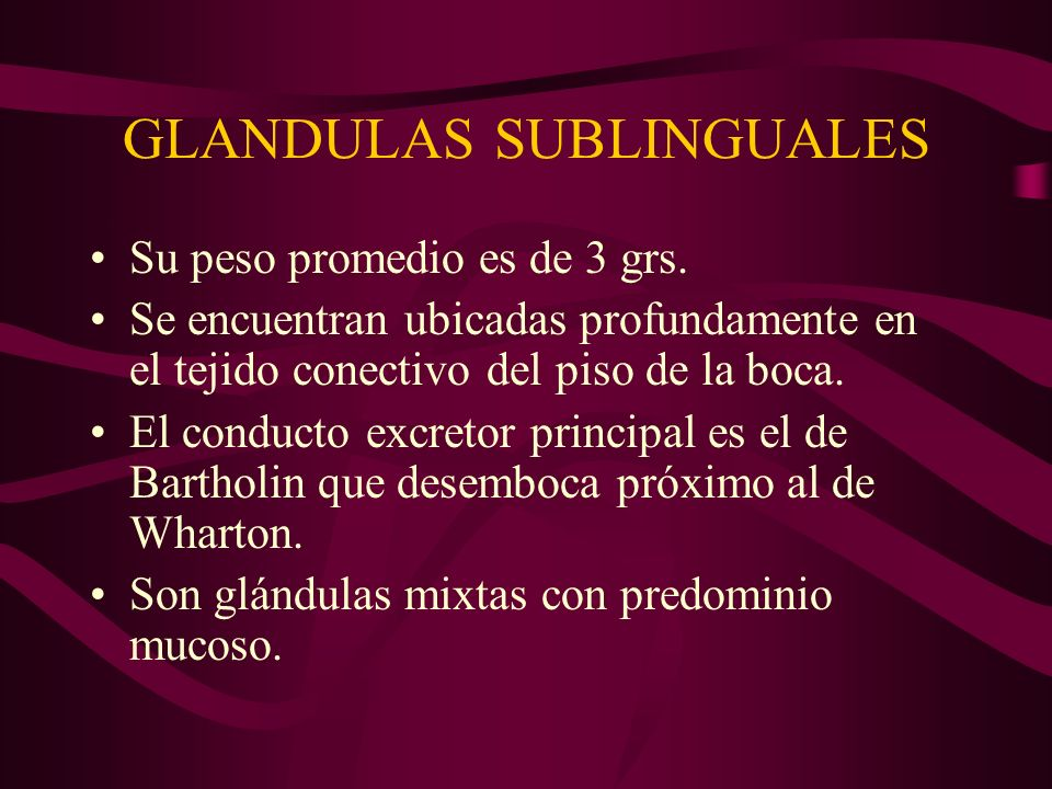 GLANDULAS SUBLINGUALES