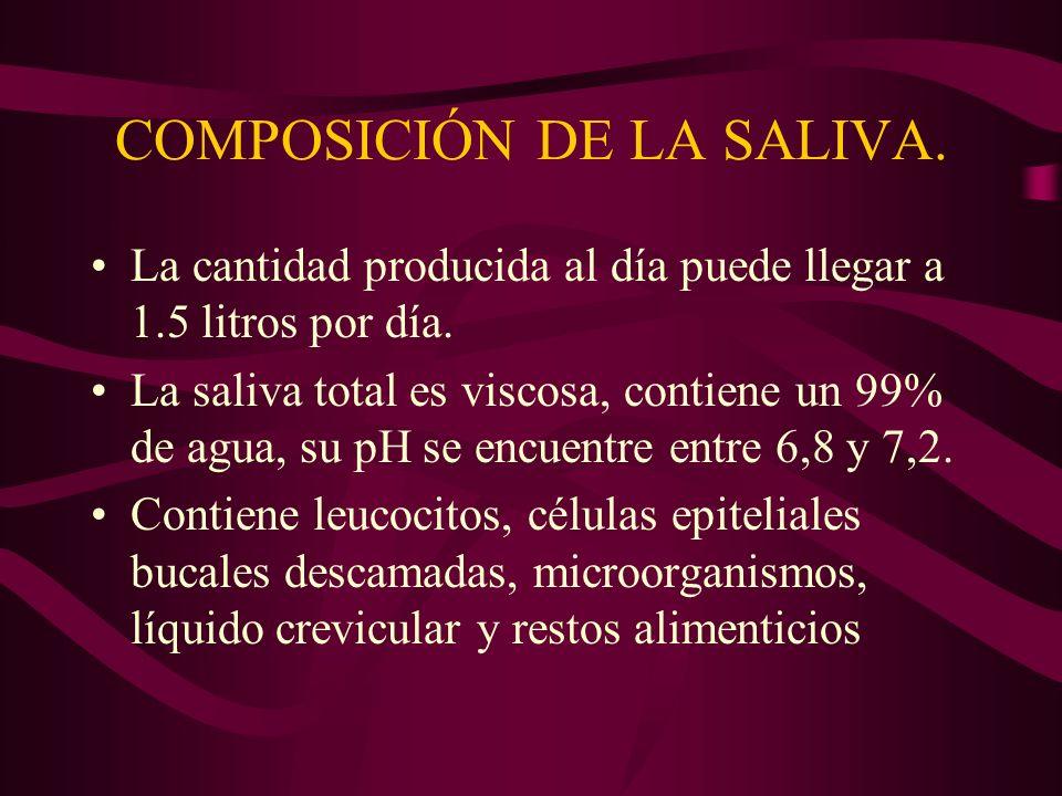 COMPOSICIÓN DE LA SALIVA.