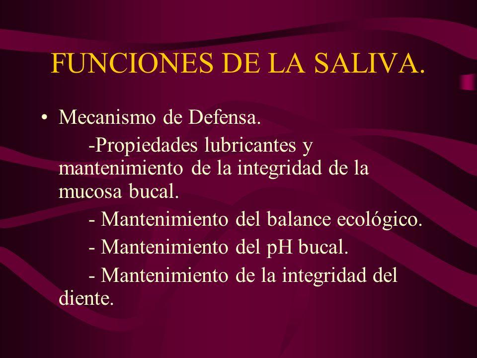FUNCIONES DE LA SALIVA. Mecanismo de Defensa.