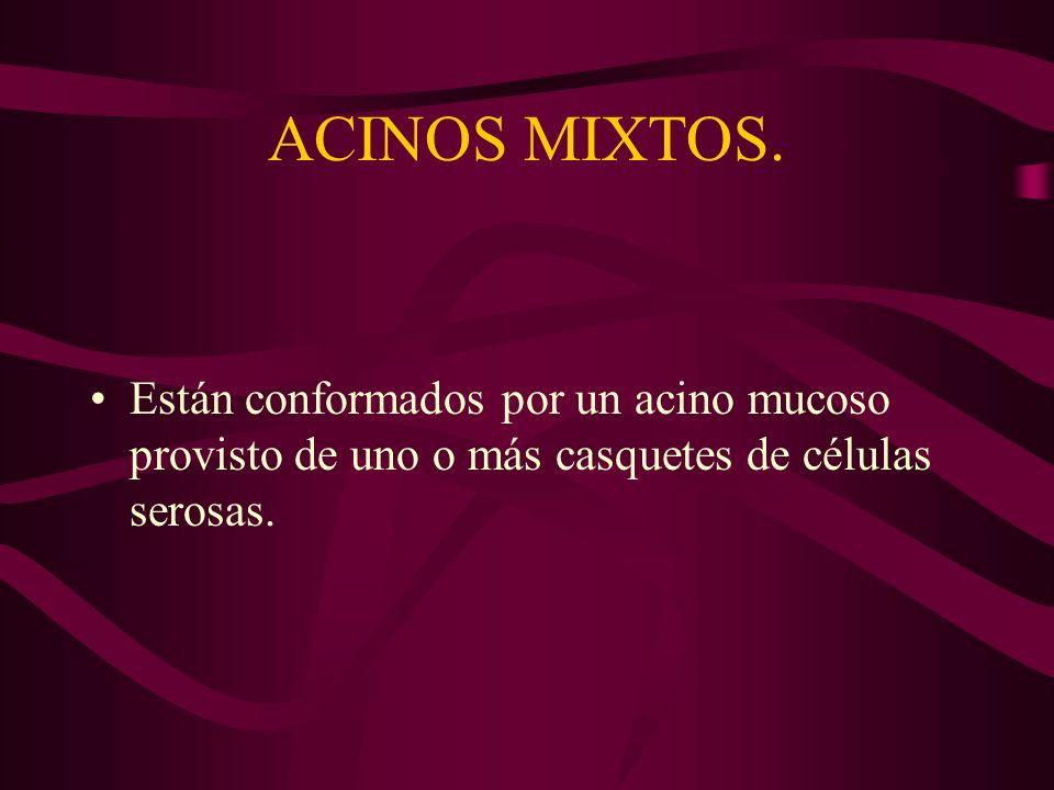 ACINOS MIXTOS.