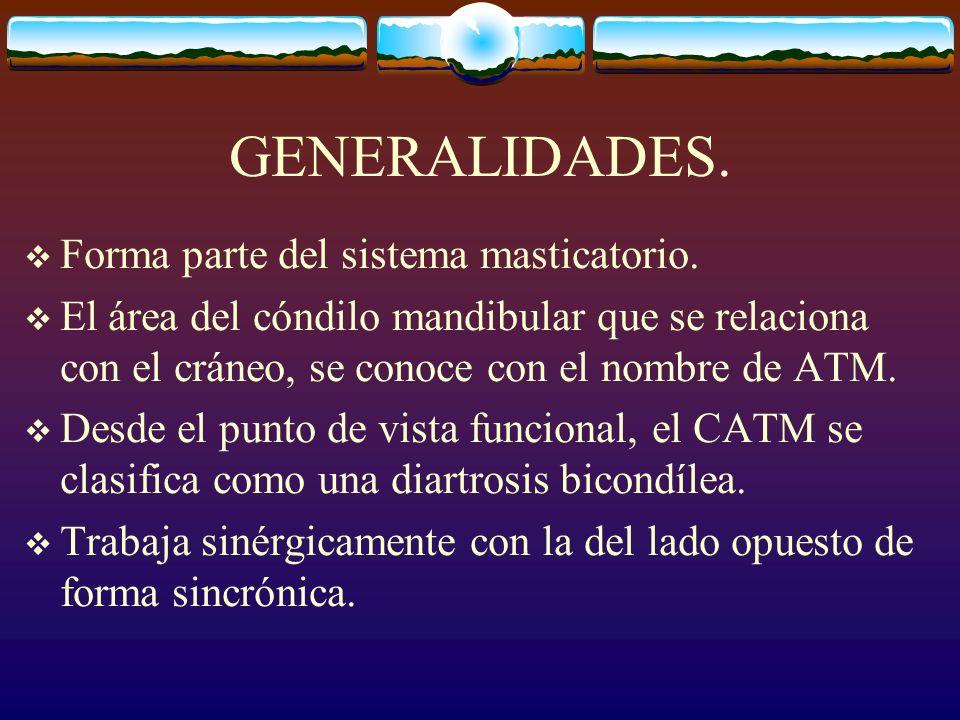 GENERALIDADES. Forma parte del sistema masticatorio.