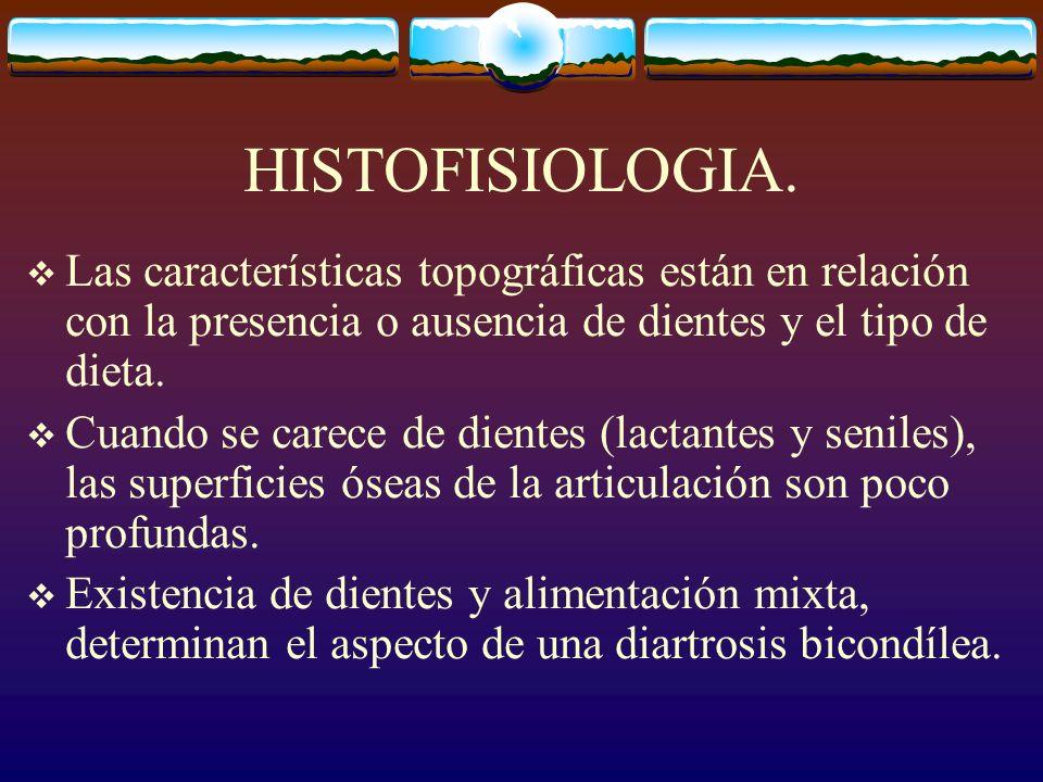 HISTOFISIOLOGIA. Las características topográficas están en relación con la presencia o ausencia de dientes y el tipo de dieta.