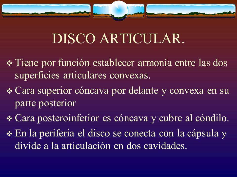 DISCO ARTICULAR. Tiene por función establecer armonía entre las dos superficies articulares convexas.