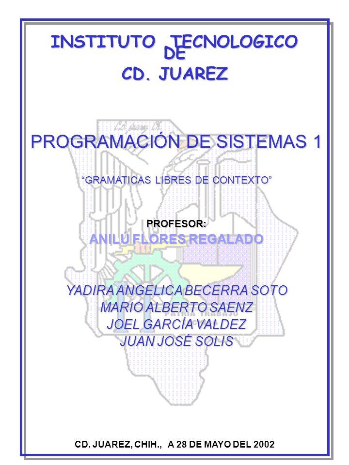 INSTITUTO TECNOLOGICO DE CD. JUAREZ, CHIH., A 28 DE MAYO DEL 2002
