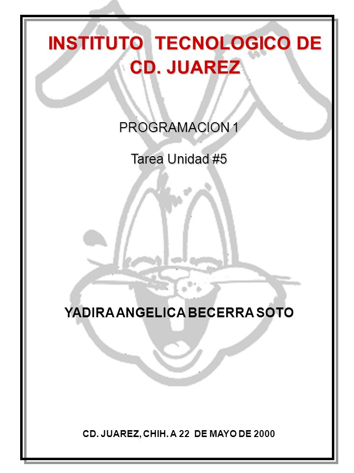 INSTITUTO TECNOLOGICO DE CD. JUAREZ