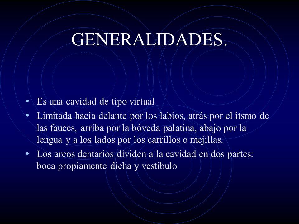 GENERALIDADES. Es una cavidad de tipo virtual