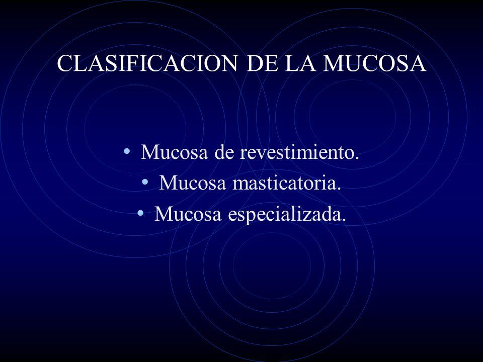CLASIFICACION DE LA MUCOSA