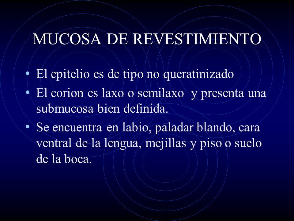 MUCOSA DE REVESTIMIENTO