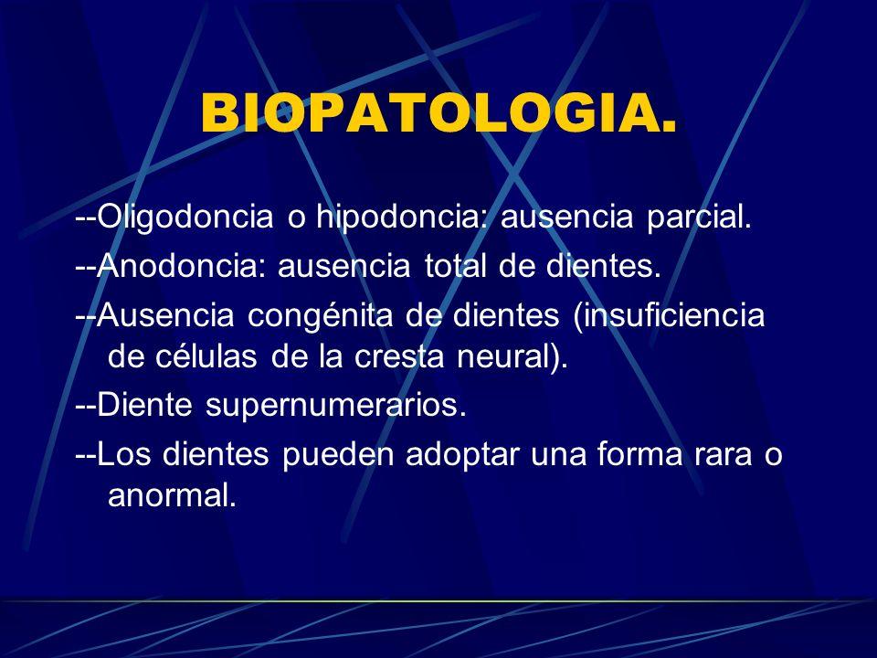 BIOPATOLOGIA. --Oligodoncia o hipodoncia: ausencia parcial.