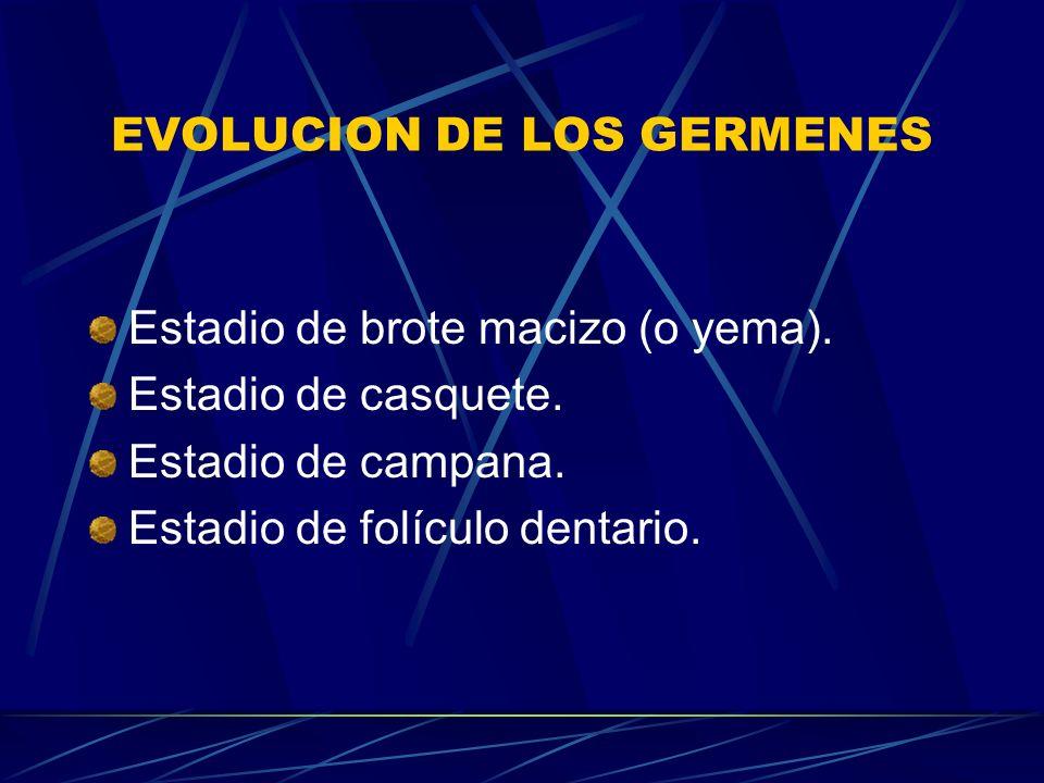 EVOLUCION DE LOS GERMENES